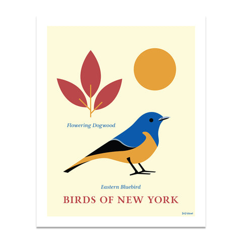 Eastern Bluebird- Birds of New York