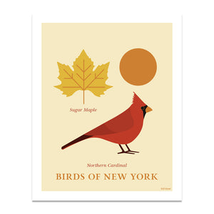 Northern Cardinal - Birds of New York