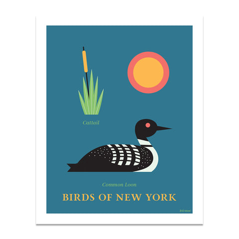 Common Loon - Birds of New York