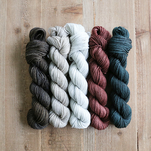 WILDWOOD - set of 5 mini skeins