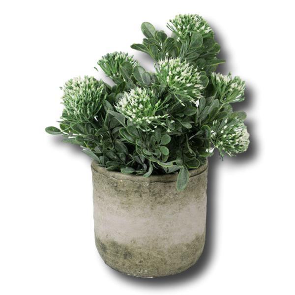 Flowering Plant in Clay Pot Artificial - Janggalay