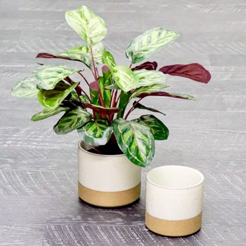 Mikala Ceramic Pot White