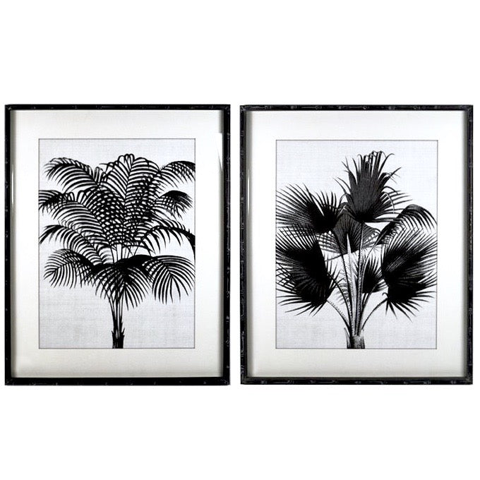 Palm Art Set of 2 Black and White