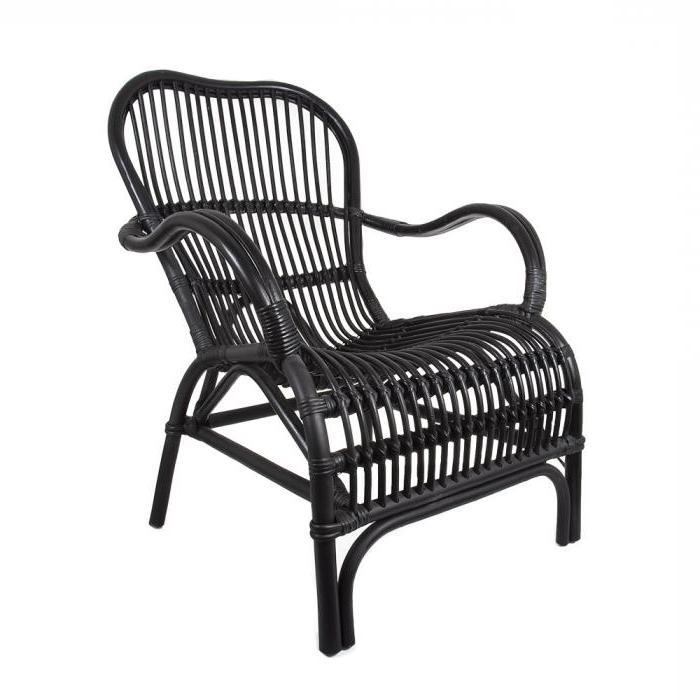 Brunswick Cane Chair Black-Janggalay