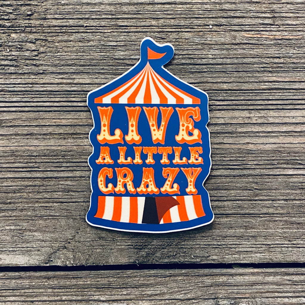 Live A Little Crazy Vinyl Sticker
