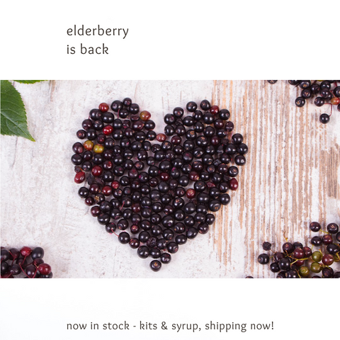 Handmade elderberry syrup is back in stock green and lovely