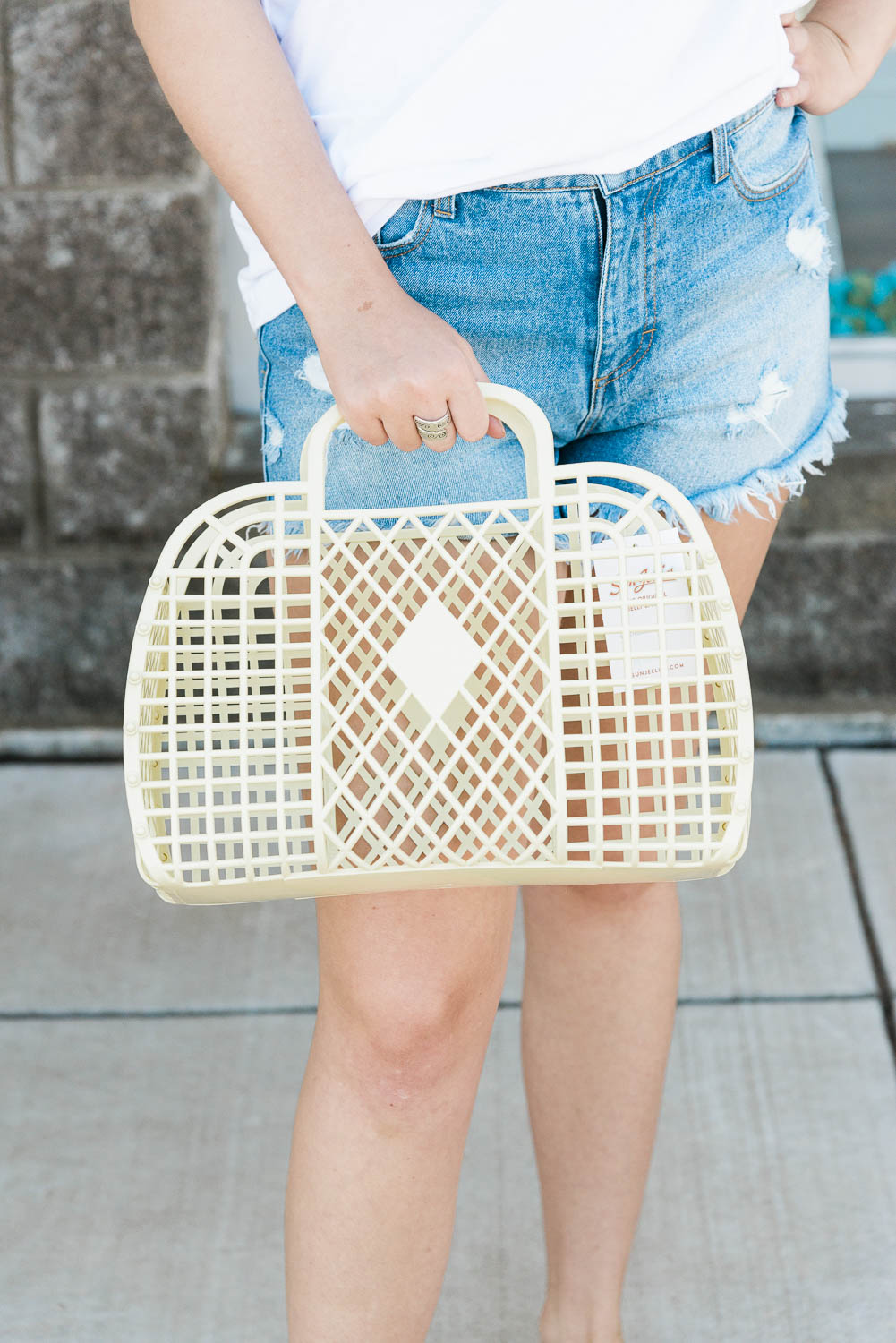 The Large Retro Basket-5 Colors