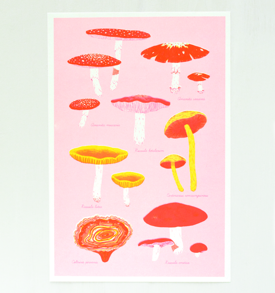 TECHNICOLOUR TOADSTOOLS ART PRINT