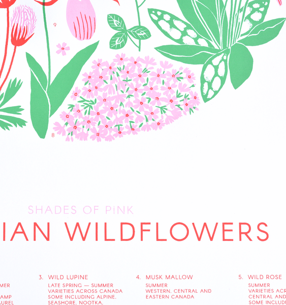 CANADIAN WILDFLOWERS | SHADES OF PINK