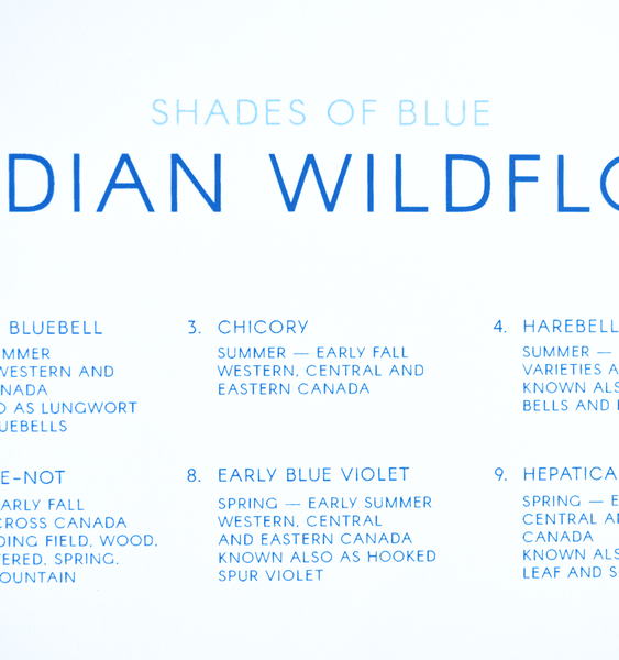 CANADIAN WILDFLOWERS | SHADES OF BLUE