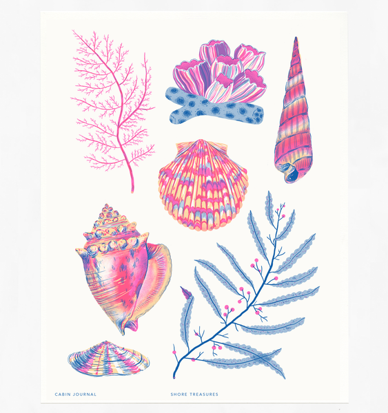SHORE TREASURES ART PRINT