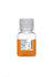 Rabbit Serum - 0.2 µm Sterile Filtered, 100 ml, EU Eligible Origin