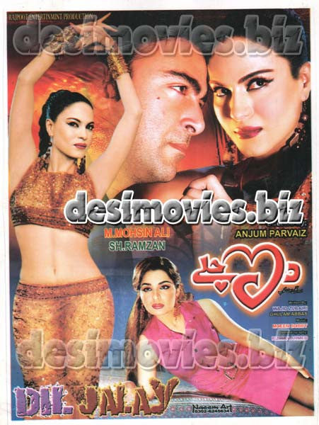 Dil Jalay  (2014) Lollywood Original Booklet