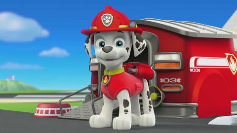 fire truck visit with marshall from paw patrol october 12 10