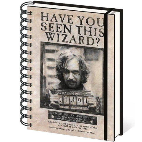Have You Seen This Wizard Harry Potter Notebook (Lined)