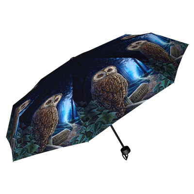 Way of the Witch Owl Umbrella
