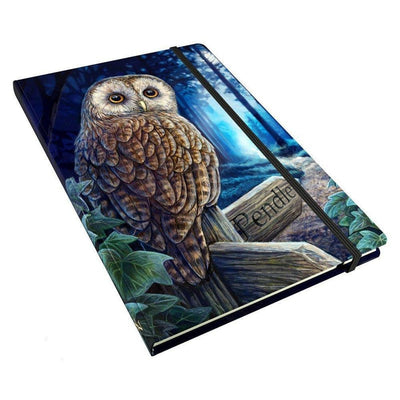Wise Owl Sketch Book / Journal 15cm x 21cm