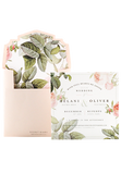 French Rose Garden Invitation