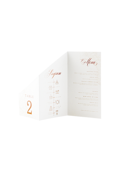 A Captivating Voyage - Program, Menu & Table Number Combo