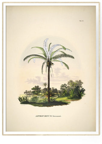 Botanical palm print #3501