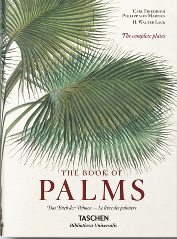 The Book of Palms – Small