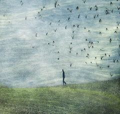 Walking With Birds, Linda Bembridge Alternate View