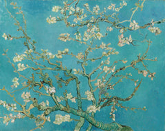Almond Blossom, Vincent Van Gogh Alternate View