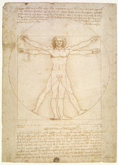 The Proportions of the human figure (after Vitruvius), Leonardo Da Vinci Alternate View