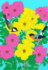 Bullfinch: Great Tit and Roses, Robin Duttson