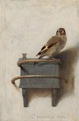 The Goldfinch, Carel Fabritus Alternate View