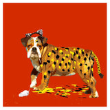 The Dog Who Wanted To Be A Leopard, Carl Moore - CultureLabel