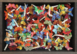 Moth Collection, John Dilnot - CultureLabel - 2