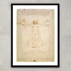 The Proportions of the human figure (after Vitruvius), Leonardo Da Vinci