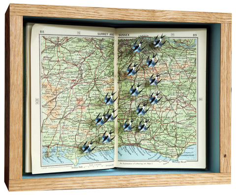 Pocket Atlas - Sussex Bound, John Dilnot - CultureLabel