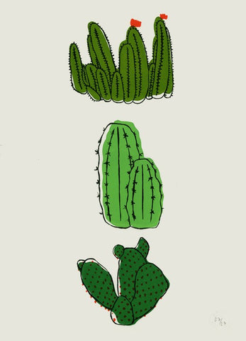 Cactus Screen Print, Baines&Fricker