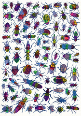 Beetles, John Dilnot
