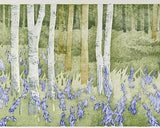 Bluebell Wood. Wet Spring, Laura Boswell - CultureLabel - 2