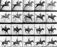 Man & Horse Jumping, Eadweard Muybridge Alternate View