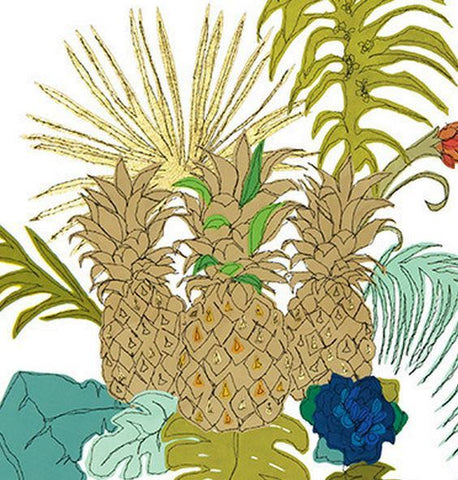 Pineapples, Claire Coles Alternate View