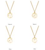 Zodiac Constellation Necklace - Silver, Gold & Diamonds, No 13