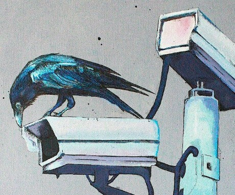 (Blue Movie) A Crow Left of the Murder, Darragh Powell Alternate View