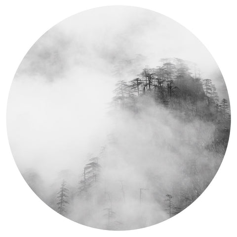 Misty Mountains I, Tim Hall