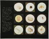 After microscope slides found in Freud's collection and a quotation from Jacques Lacan, Susan Hiller - CultureLabel