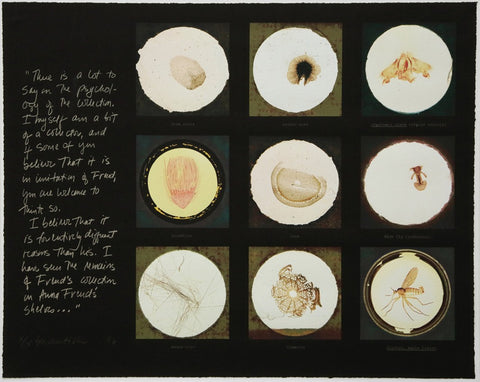 After microscope slides found in Freud's collection and a quotation from Jacques Lacan, Susan Hiller