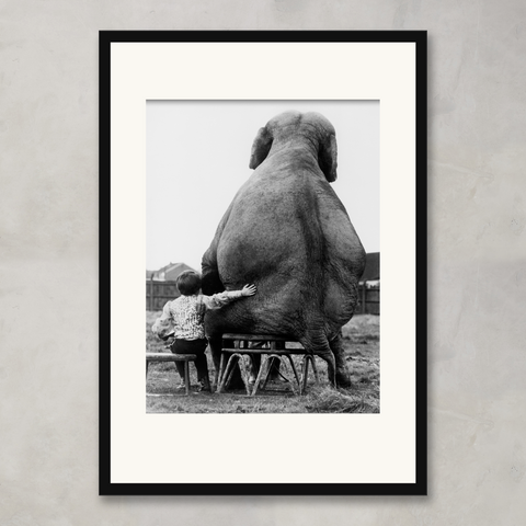 Child Seated Near An Elephant C. 1985, Bridgeman Images