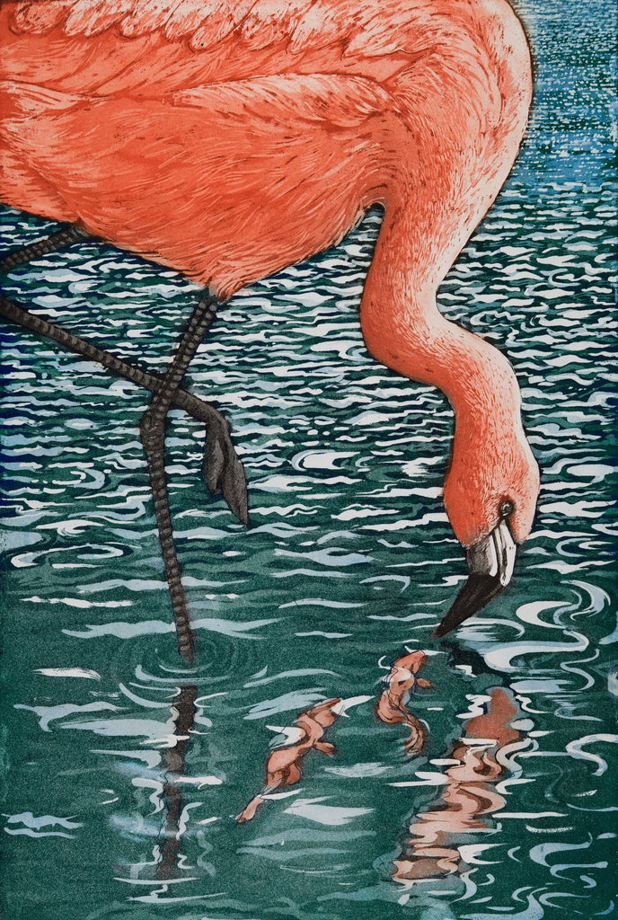Flamenco Flamingo, Jane Peart - CultureLabel - 1
