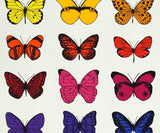 32 Butterflies, Scott Campbell - CultureLabel - 2