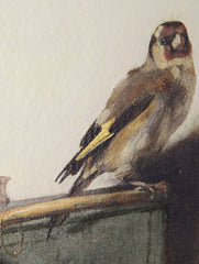 The Goldfinch by Carel Fabritius, Verus Art Alternate View