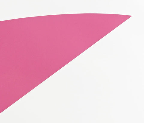 Pink Curve, Jonathan Horowitz Alternate View