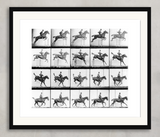 Man & Horse Jumping, Eadweard Muybridge